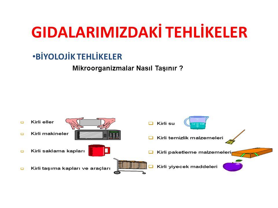 1.ORGANİZASYON-PERSONEL Temizlik,Hijyen ve Bakım talimatları ve Prosedürleri uygulanıyor olması gerekir.