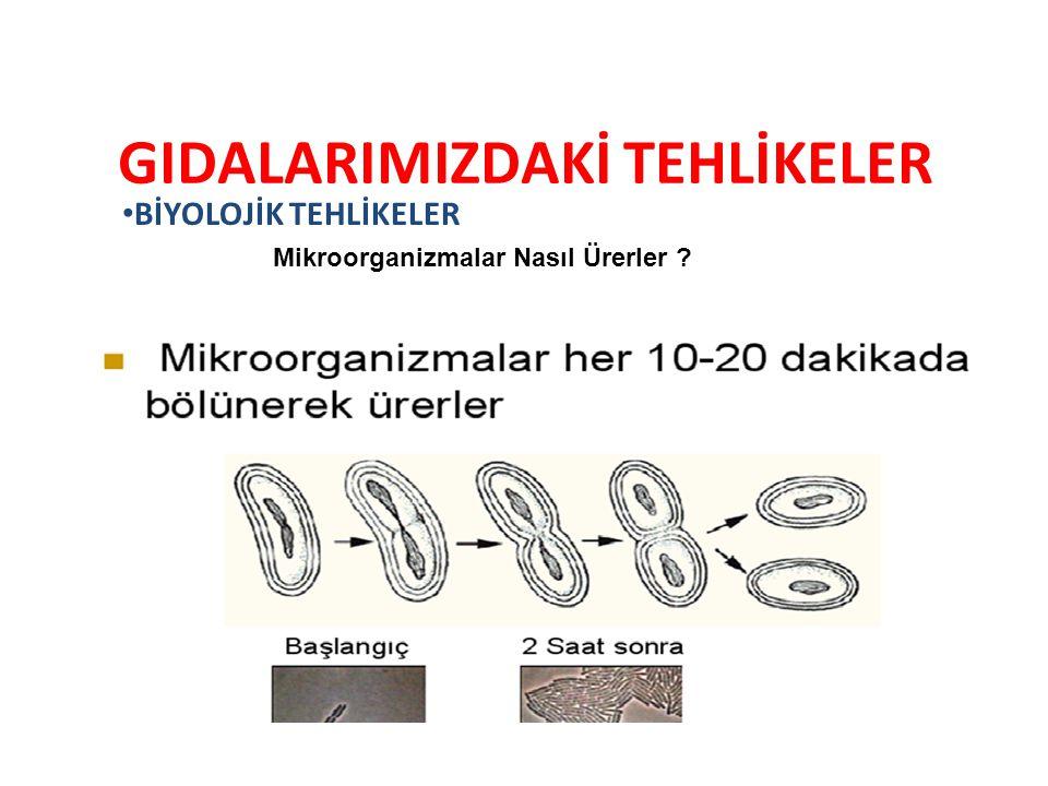 10.STANDART ÇALIŞMA YÖNTEMLERİ 10.2.