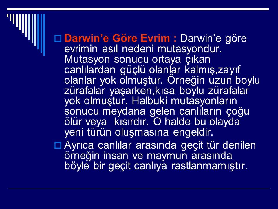  Darwin'e Göre Evrim : Darwin'e göre evrimin asıl nedeni mutasyondur. Mutasyon sonucu ortaya çıkan canlılardan güçlü olanlar kalmış,zayıf olanlar yok