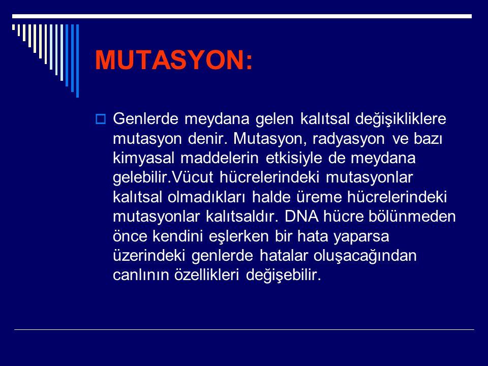 MUTASYON:  Genlerde meydana gelen kalıtsal değişikliklere mutasyon denir. Mutasyon, radyasyon ve bazı kimyasal maddelerin etkisiyle de meydana gelebi
