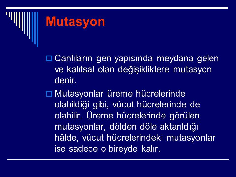 Mutasyon  Canlıların gen yapısında meydana gelen ve kalıtsal olan değişikliklere mutasyon denir.  Mutasyonlar üreme hücrelerinde olabildiği gibi, vü