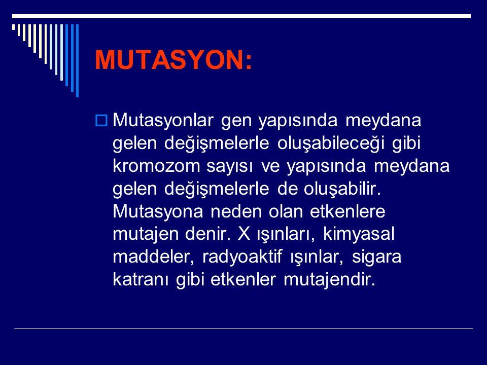 MUTASYON:  Mutasyonlar gen yapısında meydana gelen değişmelerle oluşabileceği gibi kromozom sayısı ve yapısında meydana gelen değişmelerle de oluşabi