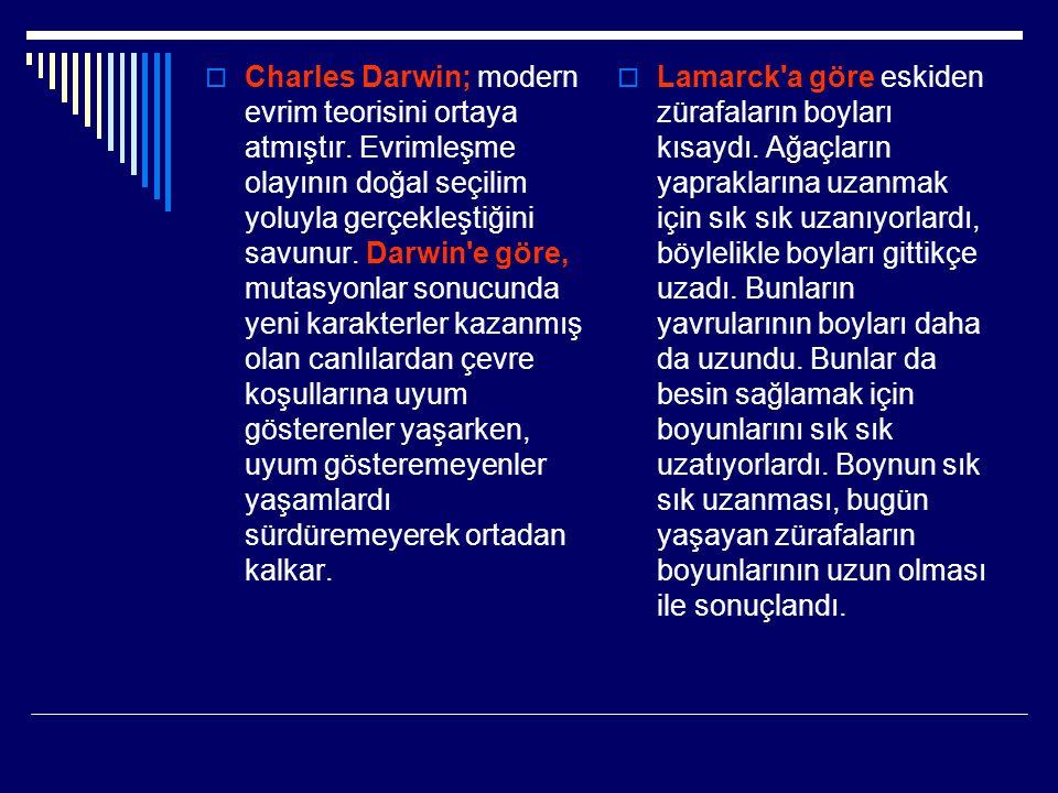  Charles Darwin; modern evrim teorisini ortaya atmıştır. Evrimleşme olayının doğal seçilim yoluyla gerçekleştiğini savunur. Darwin'e göre, mutasyonla