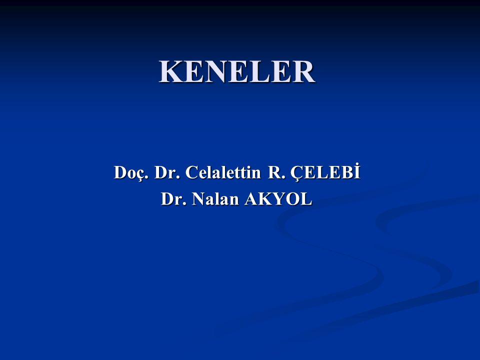 Doç Dr. Celalettin R. ÇELEBİ & Dr. Nalan AKYOL KENELER Doç. Dr. Celalettin R. ÇELEBİ Dr. Nalan AKYOL