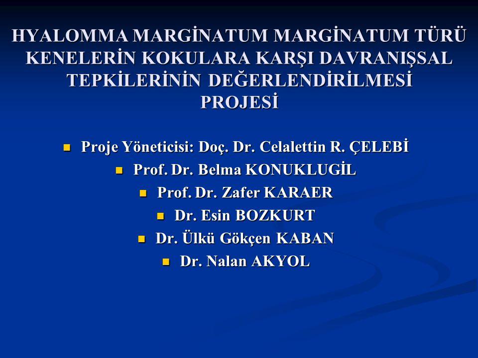 Doç Dr. Celalettin R. ÇELEBİ & Dr. Nalan AKYOL HYALOMMA MARGİNATUM MARGİNATUM TÜRÜ KENELERİN KOKULARA KARŞI DAVRANIŞSAL TEPKİLERİNİN DEĞERLENDİRİLMESİ