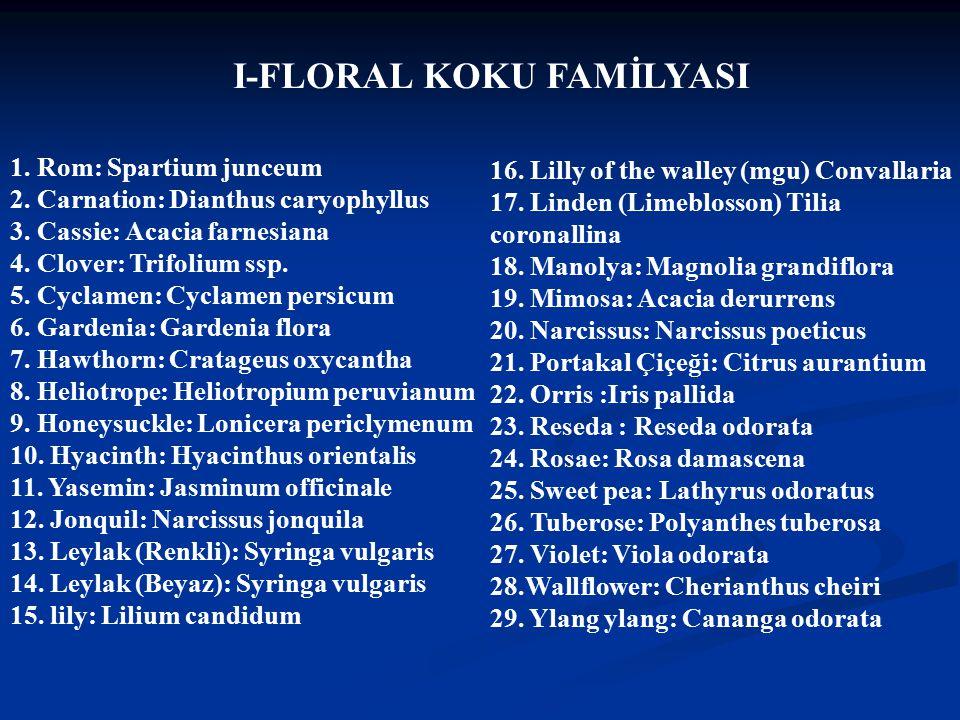 Doç Dr.Celalettin R. ÇELEBİ & Dr. Nalan AKYOL 1. Rom: Spartium junceum 2.