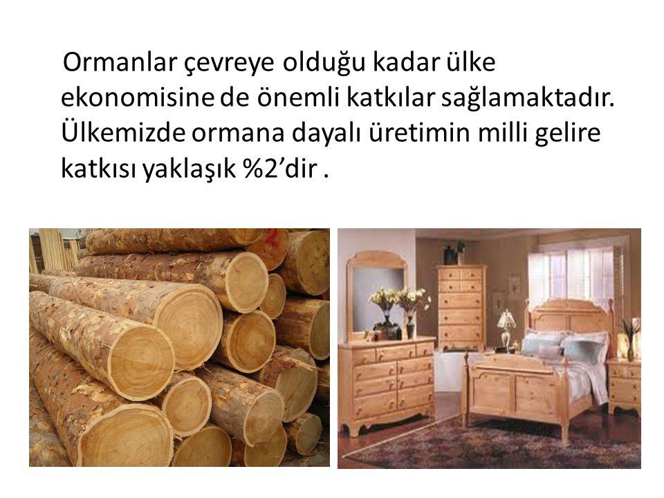 Ormanlar çevreye olduğu kadar ülke ekonomisine de önemli katkılar sağlamaktadır.