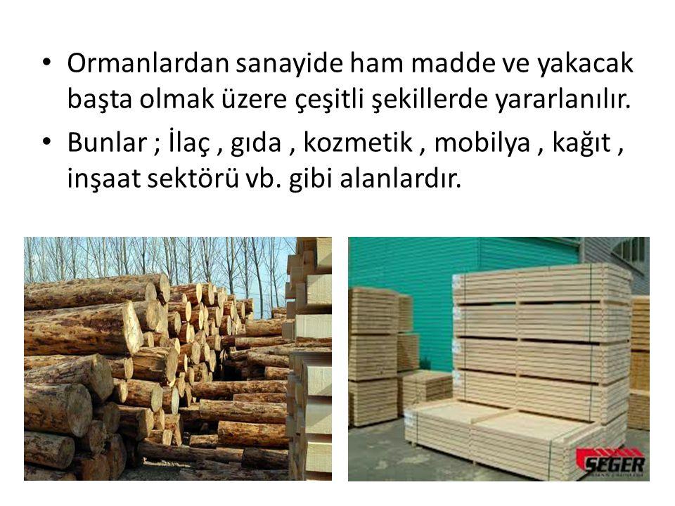 Ormanlardan sanayide ham madde ve yakacak başta olmak üzere çeşitli şekillerde yararlanılır.