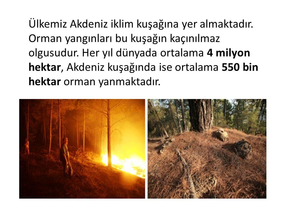 Ülkemiz Akdeniz iklim kuşağına yer almaktadır.Orman yangınları bu kuşağın kaçınılmaz olgusudur.