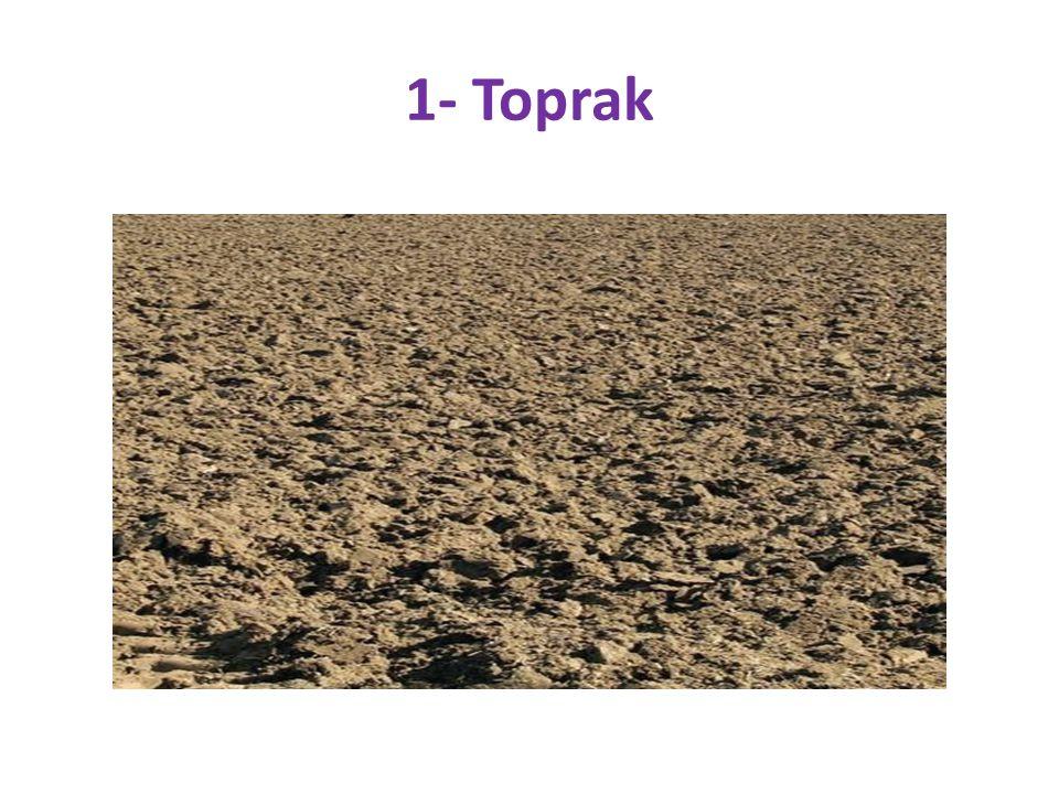 Toprak, hem sanayide ham madde olarak kullanılmakla birlikte hem de tarım ve hayvancılık faaliyetlerinin de sürdürüldüğü vazgeçilmez kaynaklardan biridir.