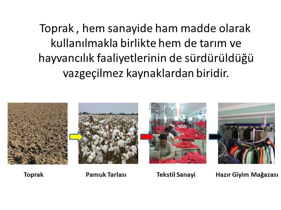 3) Yaban Hayvanları için Barınak