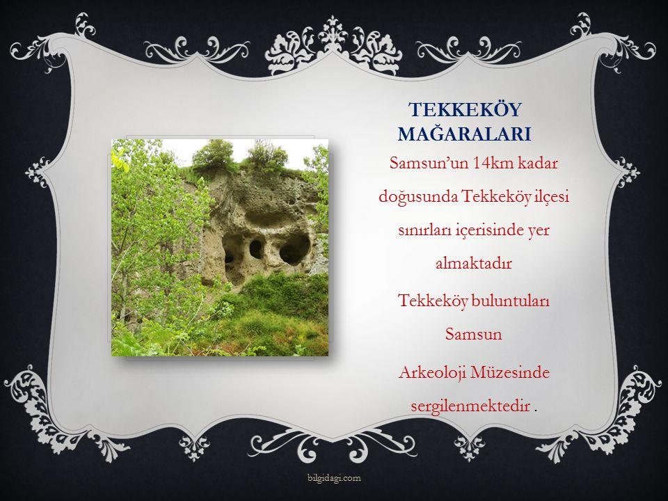 TEKKEKÖY MAĞARALARI Samsun'un 14km kadar doğusunda Tekkeköy ilçesi sınırları içerisinde yer almaktadır Tekkeköy buluntuları Samsun Arkeoloji Müzesinde