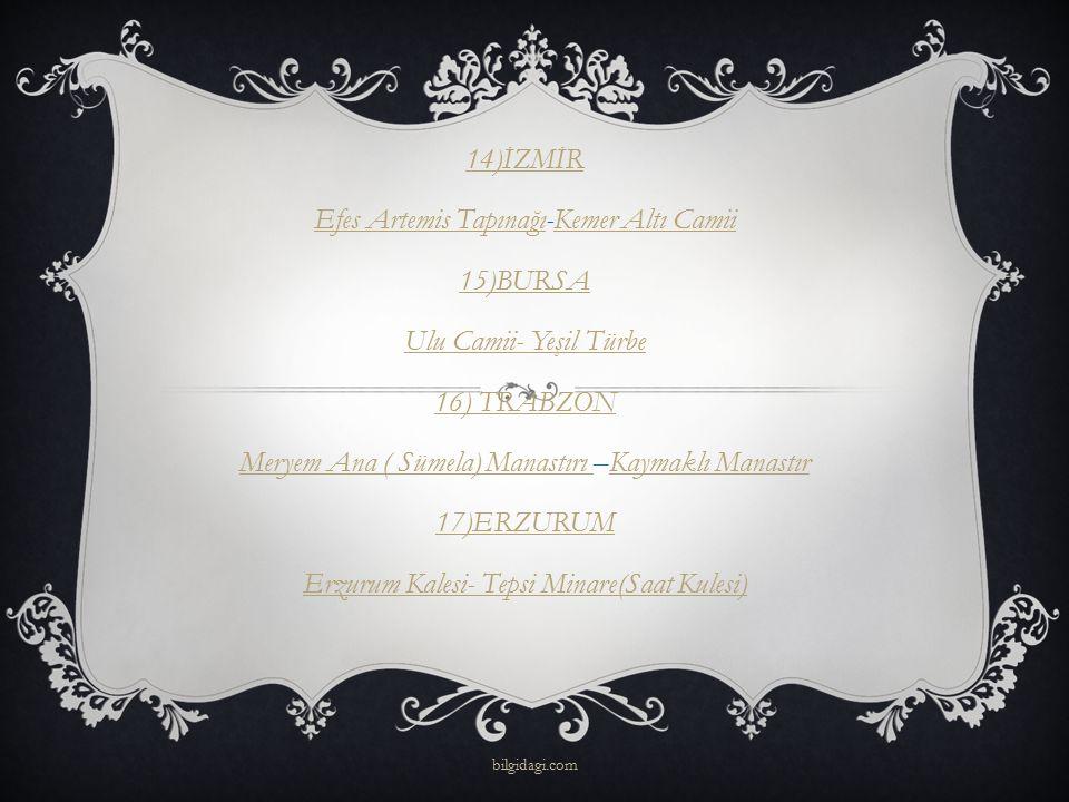14)İZMİR Efes Artemis TapınağıEfes Artemis Tapınağı-Kemer Altı CamiiKemer Altı Camii 15)BURSA Ulu Camii- Yeşil Türbe 16) TRABZON Meryem Ana ( Sümela)