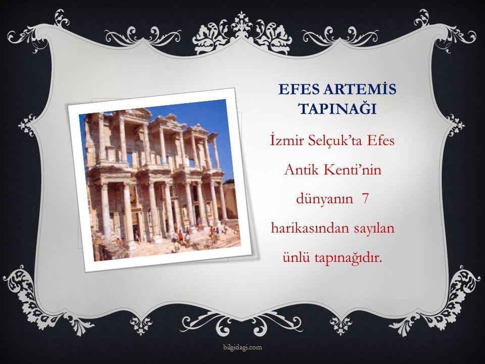 EFES ARTEMİS TAPINAĞI İzmir Selçuk'ta Efes Antik Kenti'nin dünyanın 7 harikasından sayılan ünlü tapınağıdır. bilgidagi.com
