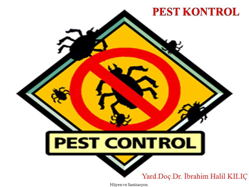  Gıda işletmelerinde ev sineği haricindeki sinekler de zaman zaman önemli sorunlara yol açabilirler.