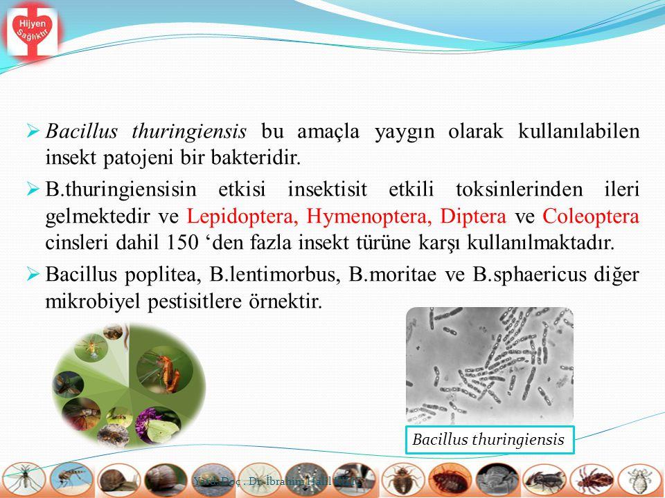  Bacillus thuringiensis bu amaçla yaygın olarak kullanılabilen insekt patojeni bir bakteridir.  B.thuringiensisin etkisi insektisit etkili toksinler