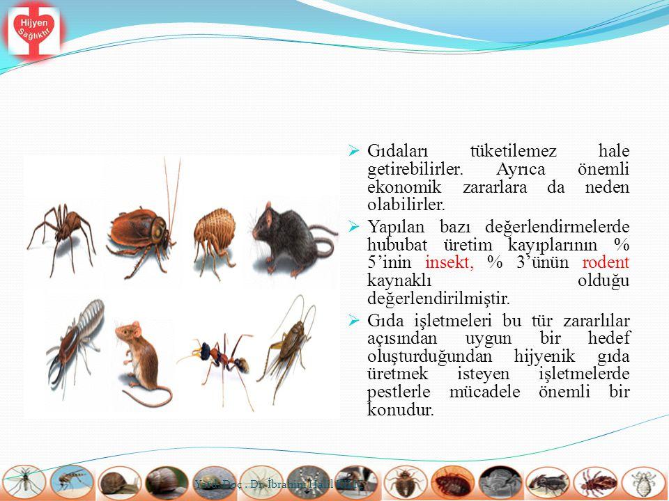 Bu açıdan en önemli sayılan hastalık etkenleri Tabloda verilmektedir.