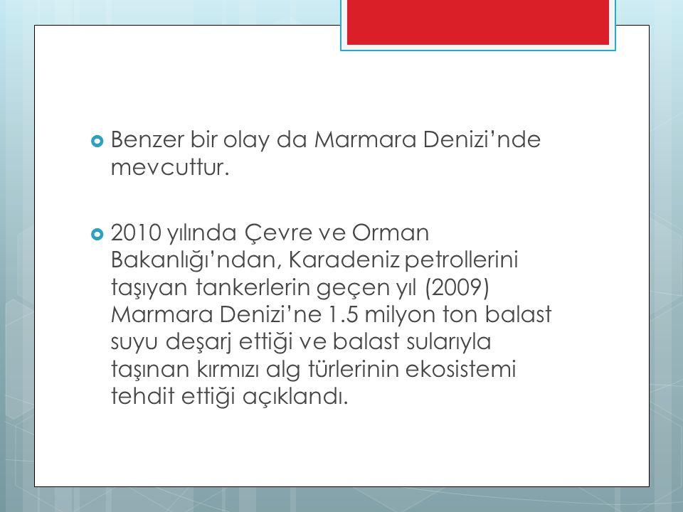  Benzer bir olay da Marmara Denizi'nde mevcuttur.  2010 yılında Çevre ve Orman Bakanlığı'ndan, Karadeniz petrollerini taşıyan tankerlerin geçen yıl
