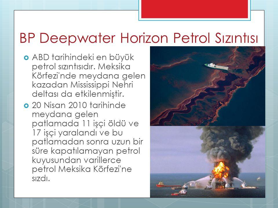 BP Deepwater Horizon Petrol Sızıntısı  ABD tarihindeki en büyük petrol sızıntısıdır. Meksika Körfezi'nde meydana gelen kazadan Mississippi Nehri delt