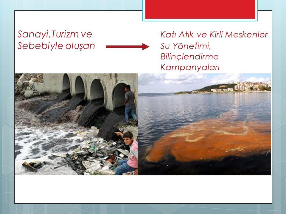Sanayi,Turizm ve Katı Atık ve Kirli Meskenler Sebebiyle oluşan Su Yönetimi, Bilinçlendirme Kampanyaları