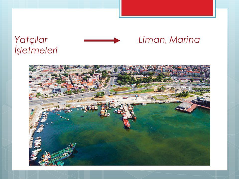 Yatçılar Liman, Marina İşletmeleri
