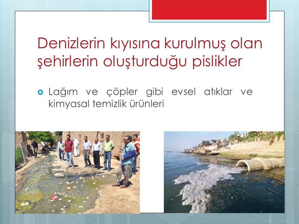Denizlerin kıyısına kurulmuş olan şehirlerin oluşturduğu pislikler  Lağım ve çöpler gibi evsel atıklar ve kimyasal temizlik ürünleri
