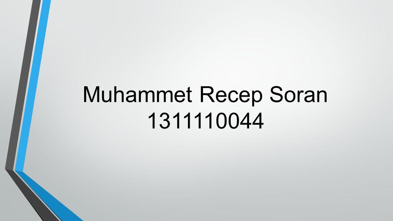 Muhammet Recep Soran 1311110044