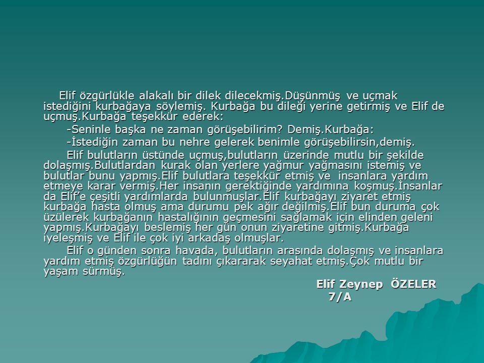 Halide Edip,1919 yılında İstanbul halkını ülkenin işgaline karşı harekete geçirmek için yaptığı konuşmaları ile zihinlerde yer etmiş usta bir hatiptir Kurtuluş Savaşı'nda cephede Mustafa Kemal'in yanında görev yapmış,sivil olmasına rağmen rütbe alarak bir savaş kahramanı sayılmıştır Savaş yıllarında AA kurulmasında rol olarak gazetecilikte yapmıştır.