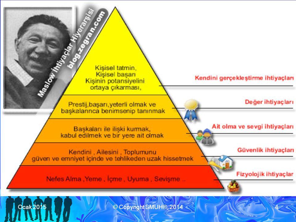 Toplumun Bağışıklık Sistemi Zayıflama / güçlenmeleri birbirini etkileyen katmanlar: 1.