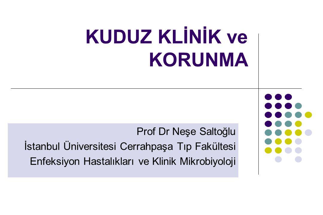 KUDUZ KLİNİK ve KORUNMA Prof Dr Neşe Saltoğlu İstanbul Üniversitesi Cerrahpaşa Tıp Fakültesi Enfeksiyon Hastalıkları ve Klinik Mikrobiyoloji