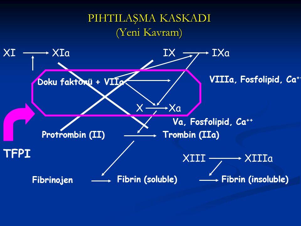 PIHTILAŞMA KASKADI (Yeni Kavram) Doku fakt ö r ü + VIIa XXa XIXIaIXIXa VIIIa, Fosfolipid, Ca ++ Va, Fosfolipid, Ca ++ Protrombin (II)Trombin (IIa) Fib