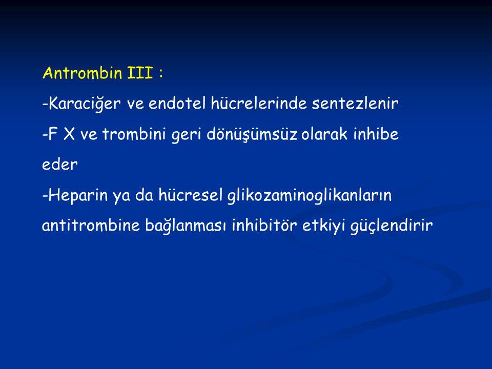Antrombin III : -Karaciğer ve endotel hücrelerinde sentezlenir -F X ve trombini geri dönüşümsüz olarak inhibe eder -Heparin ya da hücresel glikozamino