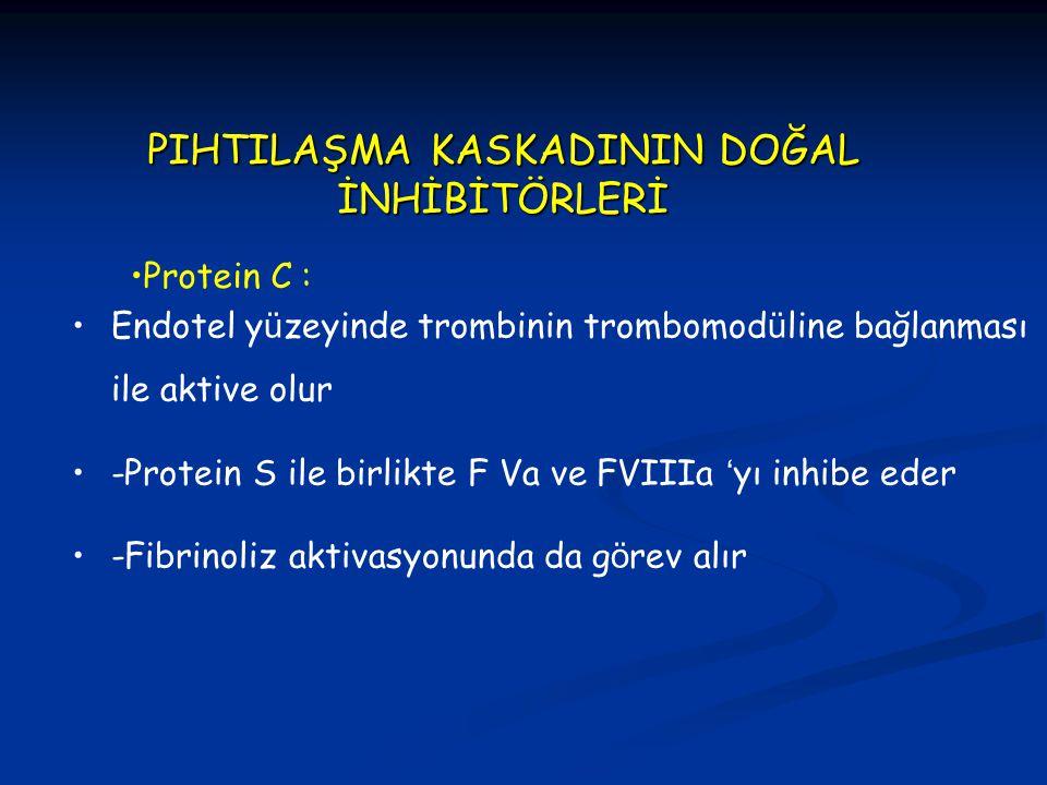 PIHTILAŞMA KASKADININ DOĞAL İNHİBİTÖRLERİ Endotel y ü zeyinde trombinin trombomod ü line bağlanması ile aktive olur -Protein S ile birlikte F Va ve FV