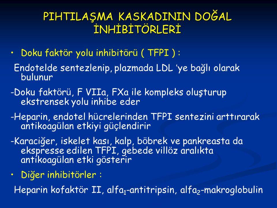 PIHTILAŞMA KASKADININ DOĞAL İNHİBİTÖRLERİ Doku fakt ö r yolu inhibit ö r ü ( TFPI ) : -Endotelde sentezlenip, plazmada LDL ' ye bağlı olarak bulunur -