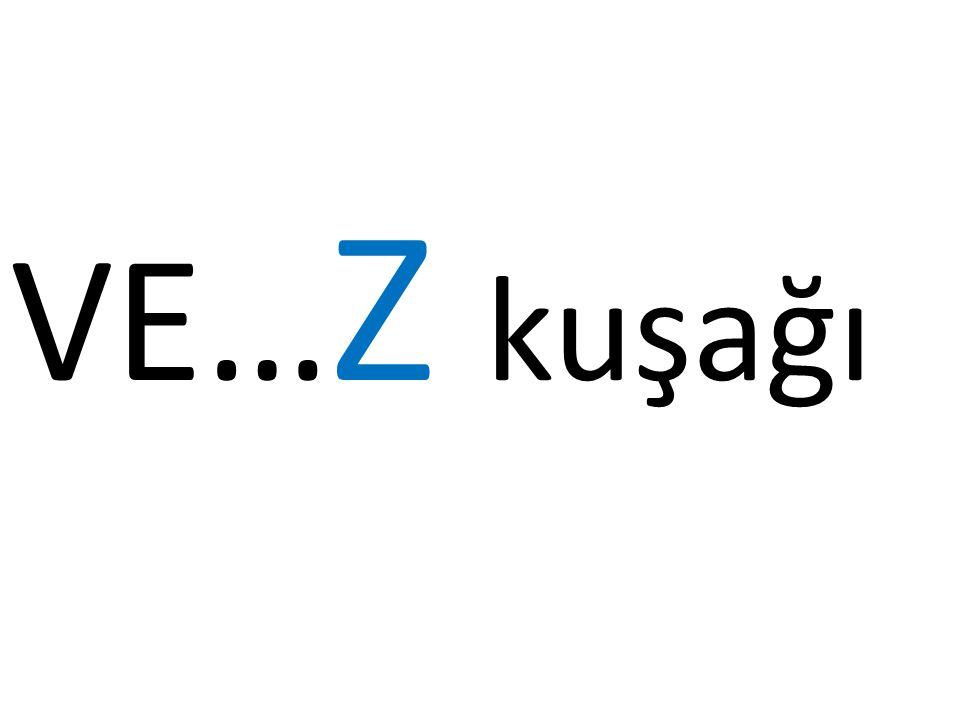 VE… Z kuşağı