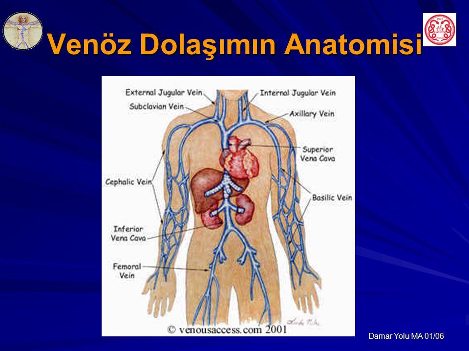 Damar Yolu MA 01/06 Venöz Dolaşımın Anatomisi