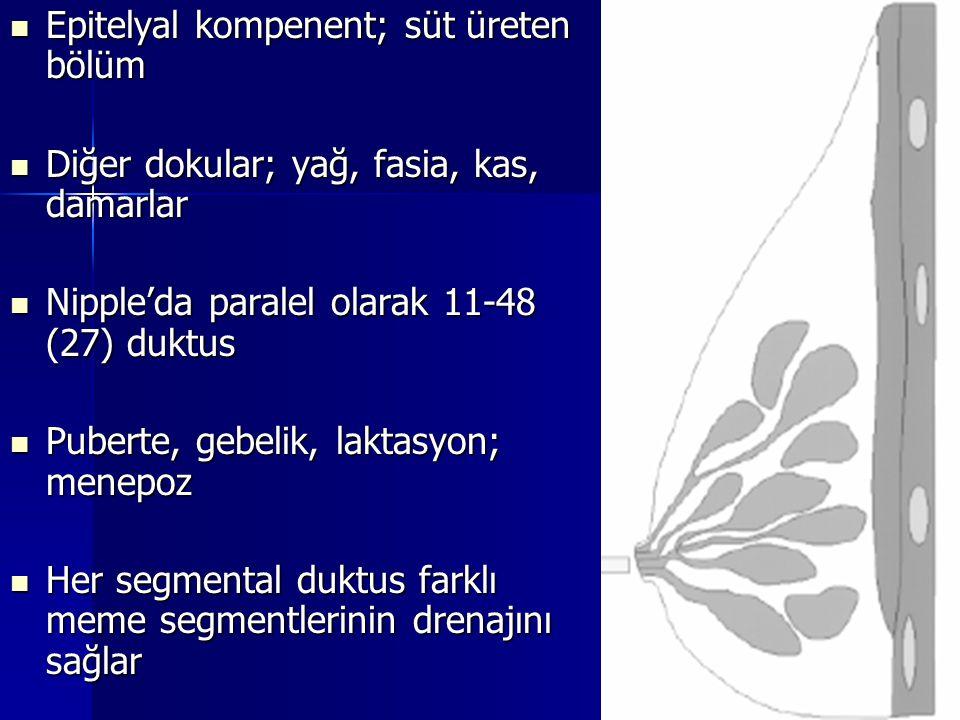 Epitelyal kompenent; süt üreten bölüm Epitelyal kompenent; süt üreten bölüm Diğer dokular; yağ, fasia, kas, damarlar Diğer dokular; yağ, fasia, kas, d
