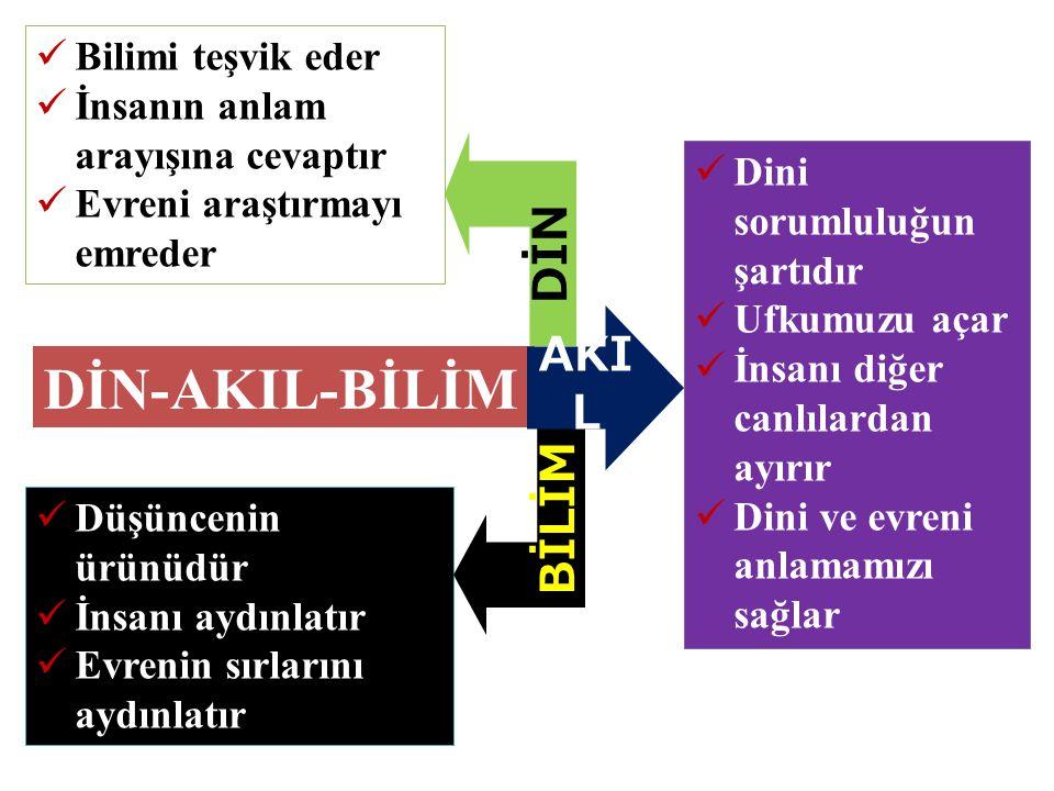 13.yüzyılda Vezir Sahip Şemsettin Mehmed Cüveyni tarafından yaptırılmıştır.