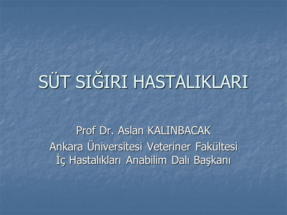 SÜT SIĞIRI HASTALIKLARI Prof Dr.