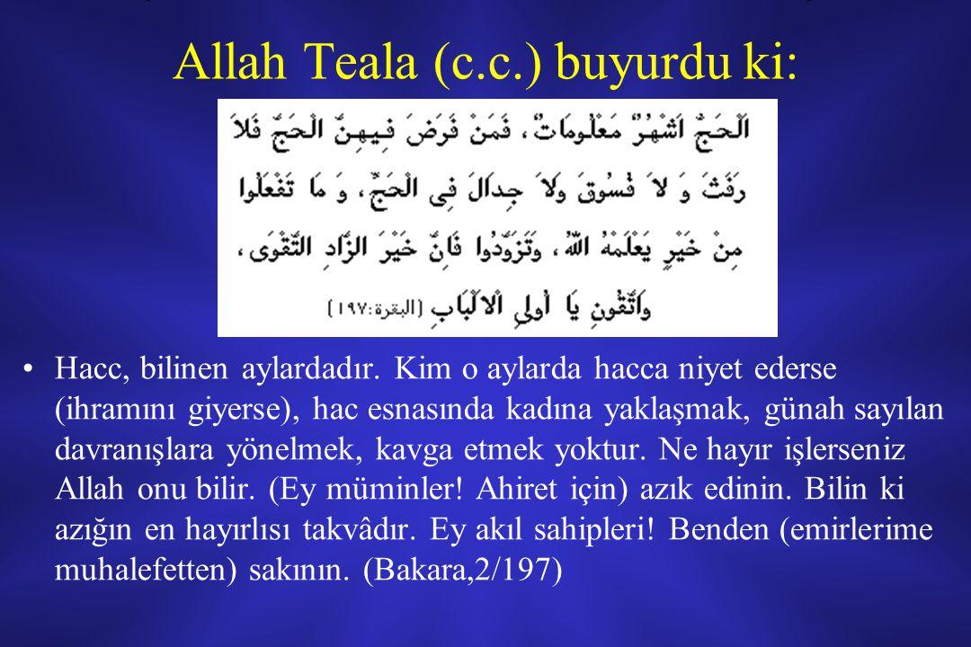 Allah Teala (c.c.) buyurdu ki: Hacc, bilinen aylardadır.