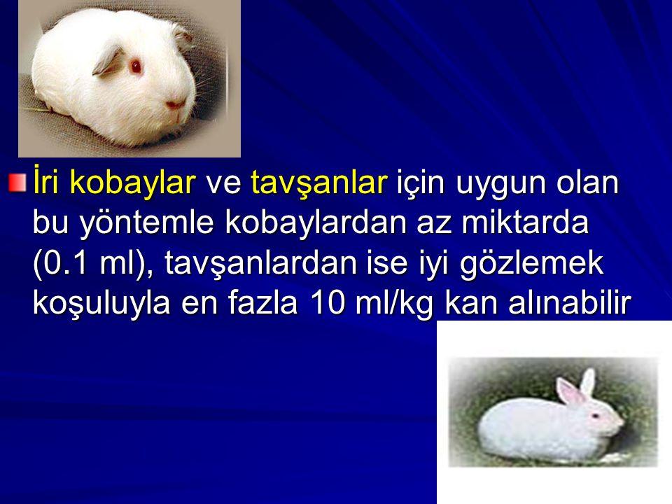 İri kobaylar ve tavşanlar için uygun olan bu yöntemle kobaylardan az miktarda (0.1 ml), tavşanlardan ise iyi gözlemek koşuluyla en fazla 10 ml/kg kan