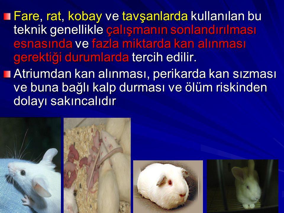 Fare, rat, kobay ve tavşanlarda kullanılan bu teknik genellikle çalışmanın sonlandırılması esnasında ve fazla miktarda kan alınması gerektiği durumlar