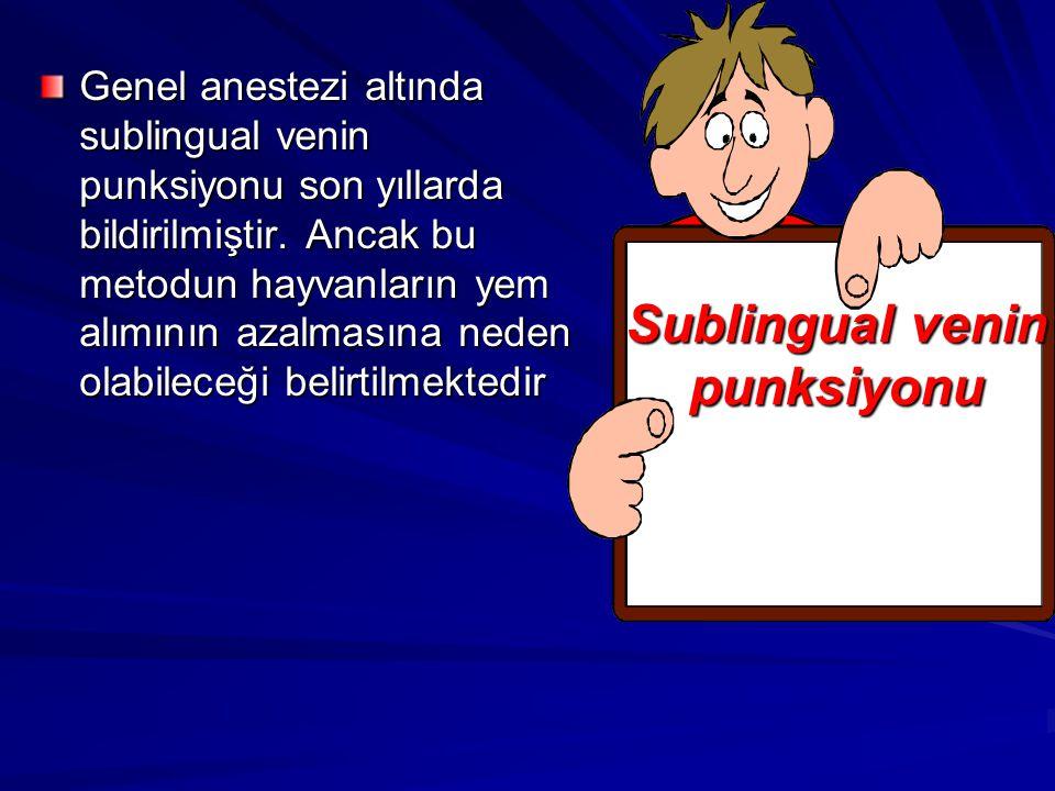 Genel anestezi altında sublingual venin punksiyonu son yıllarda bildirilmiştir. Ancak bu metodun hayvanların yem alımının azalmasına neden olabileceği