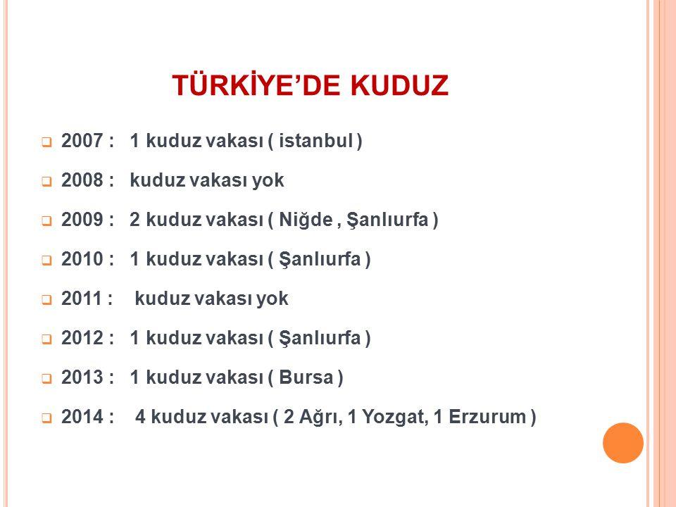 TÜRKİYE'DE KUDUZ  2007 : 1 kuduz vakası ( istanbul )  2008 : kuduz vakası yok  2009 : 2 kuduz vakası ( Niğde, Şanlıurfa )  2010 : 1 kuduz vakası (