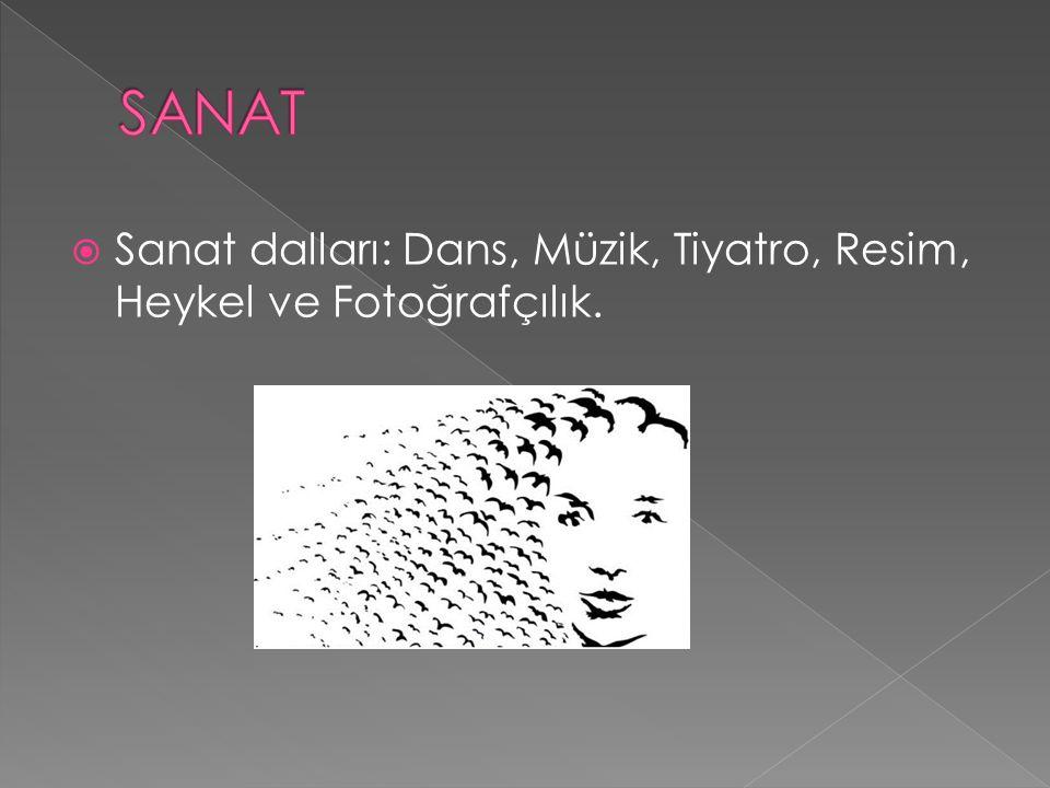  Sanat dalları: Dans, Müzik, Tiyatro, Resim, Heykel ve Fotoğrafçılık.