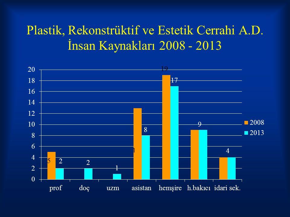 Plastik, Rekonstrüktif ve Estetik Cerrahi A.D. İnsan Kaynakları 2008 - 2013