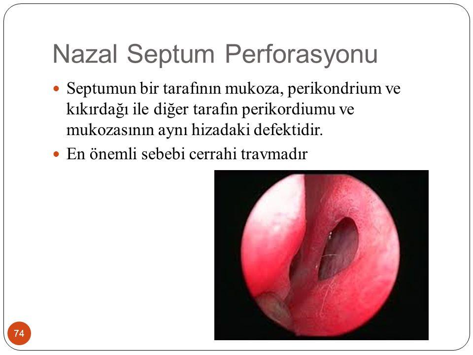 Nazal Septum Perforasyonu 74 Septumun bir tarafının mukoza, perikondrium ve kıkırdağı ile diğer tarafın perikordiumu ve mukozasının aynı hizadaki defektidir.