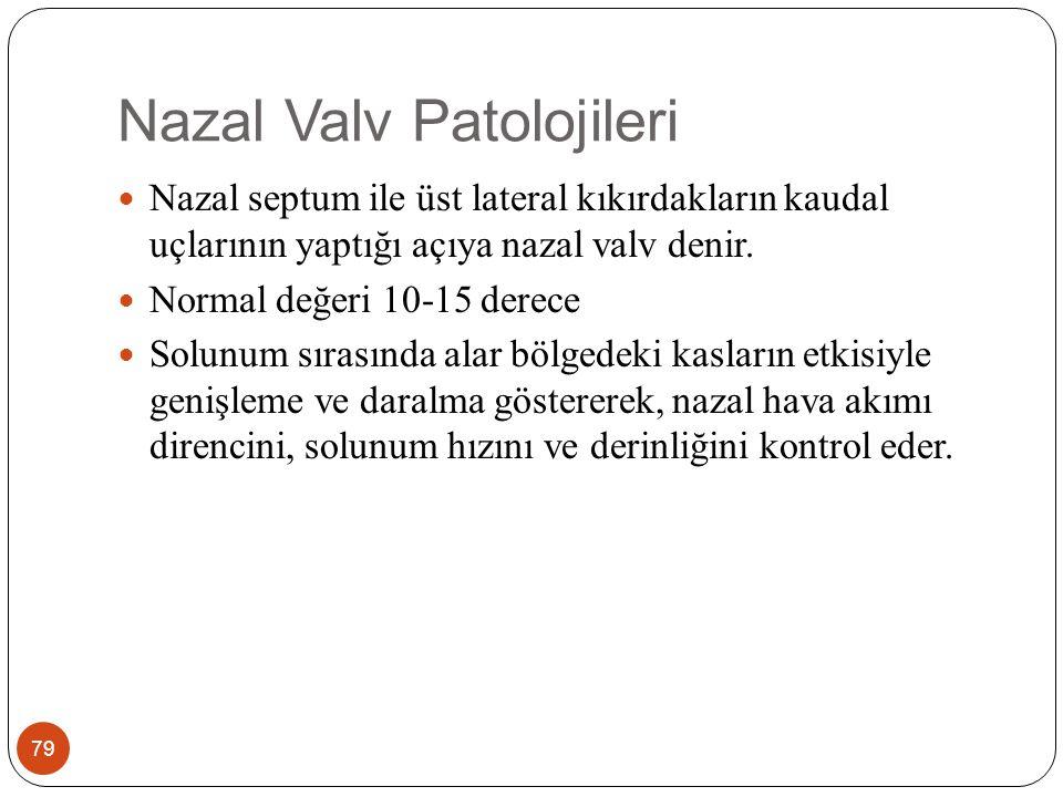 Nazal Valv Patolojileri 79 Nazal septum ile üst lateral kıkırdakların kaudal uçlarının yaptığı açıya nazal valv denir.