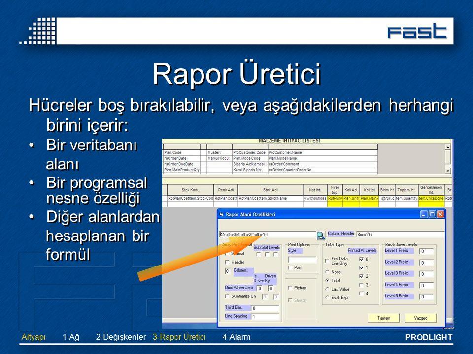 PRODLIGHT Hücreler boş bırakılabilir, veya aşağıdakilerden herhangi birini içerir: Bir veritabanı alanı Bir programsal nesne özelliği Diğer alanlardan