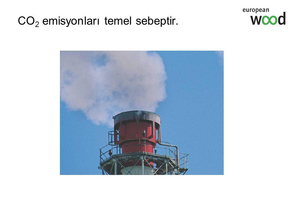 CO 2 emisyonları temel sebeptir.